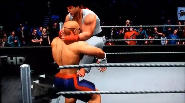 WTF, Street Fighter Characters Enter Raw Vs. Smackdown Ring