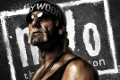 "WTF: Hulk Hogan to Join Cast of ""The Expendables 4″?"