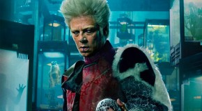 Star Wars Wants Benecio Del Toro for Villain